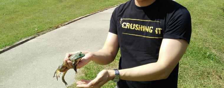 edmundloh-frog-wiibbit
